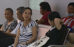 TP.HCM đẩy mạnh phòng chống virus Zika cho thai phụ