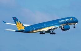Máy bay của Vietnam Airlines phải quay đầu vì va phải chim