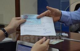 Hôm nay (25/2), TP.HCM cấp giấy phép lái xe quốc tế