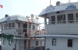 Tàu vỏ thép liên tục hỏng, ngư dân trả tàu