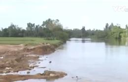 Quảng Nam: Vỡ đập vùi lấp hơn 1ha đất trồng lúa