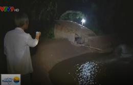 Tiếp tục vỡ đê Cù Lao Dung tại Sóc Trăng