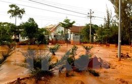 Bình Thuận tạm đình chỉ công ty khai thác Titan gây ra sự cố