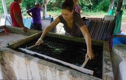 Sản xuất giấy từ chất thải của voi