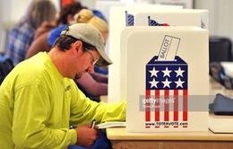 Mỹ nỗ lực nâng cao tỷ lệ cử tri đi bầu cử