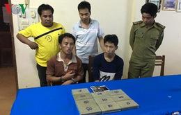 Sơn La: Phá chuyên án ma túy, thu giữ 10 bánh heroin