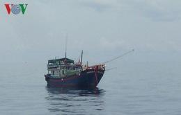 10 tàu cá Bình Thuận bị bắt giữ tại Indonesia và Malaysia
