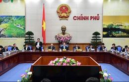 Chính phủ và Mặt trận Tổ quốc tăng cường phối hợp giám sát