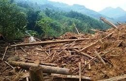 Quảng Ngãi: Hộ dân bị núi lở vùi nhà sẽ có nơi ở mới trước Tết