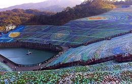 4 triệu chai nhựa phế liệu được dựng thành tranh Van Gogh