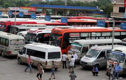 Khánh Hòa: Giá xăng giảm, giá cước vận tải chưa giảm