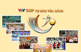 [INFOGRAPHIC] VTV CUP - Giải bóng chuyền hàng đầu Việt Nam bước sang tuổi 13