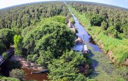 Cà Mau bảo tồn vườn quốc gia U Minh Hạ