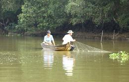 Vườn quốc gia Tràm Chim tổ chức tham quan mùa nước nổi vào tháng 9