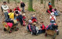Trải nghiệm lớp học rừng xanh của trẻ em tại Đức