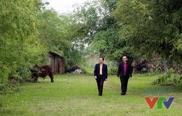 Vị bác sĩ Việt kiều Đức với phát minh y học mang hình ảnh cây tre Việt Nam