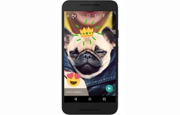 WhatsApp cập nhật tính năng camera mới trên phiên bản Android