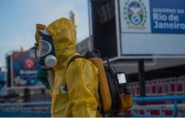 WH0 họp khẩn về virus Zika trước thềm Olympic 2016