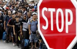 Áo siết chặt kiểm soát biên giới với người di cư