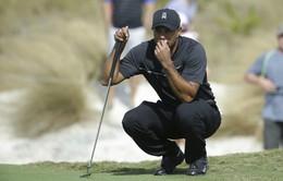 Giải Golf Hero World Challenge: Tiger Woods lấy lại phong độ ở vòng 2
