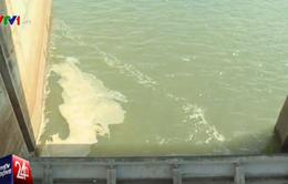 Kiểm tra việc xả nước từ hồ đập của CT TNHH MTV thủy lợi Nam Hà Tĩnh