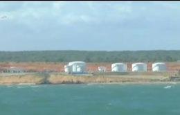 Bắt giữ hơn 13.000 tấn xăng lậu tại vùng biển Bình Thuận