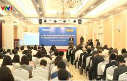 Việt Nam lần đầu tiên công bố Sách Xanh ngoại giao