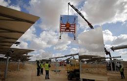 Israel xây tháp năng lượng mặt trời cao nhất thế giới