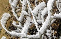 Nhiệt độ miền Bắc xuống rất thấp, vùng núi có khả năng mưa tuyết