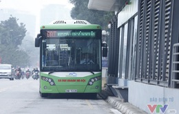 Giờ nào đi vào làn xe bus BRT sẽ bị phạt?