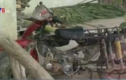 Xe độ chế nở rộ ở Tây Nguyên: Vừa mất an toàn vừa tiếp tay cho buôn gỗ lậu