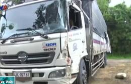 Hai ô tô va chạm trực diện, hàng chục hành khách thoát chết ở Đồng Nai