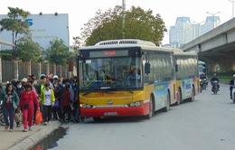 """Hà Nội xử lý hàng chục xe bus """"nhái"""""""