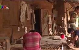 Bùng phát xưởng mộc tiêu thụ gỗ lậu tại miền núi Quảng Nam