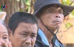 Đề án Nha Trang không có người xin ăn liệu có triệt để?