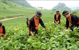 Việt Nam hoàn thành sớm mục tiêu về xóa đói nghèo đói
