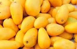 Sức hấp dẫn của trái cây Việt Nam với thị trường Nhật Bản