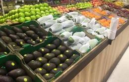 Xoài Việt lần đầu bán ở Australia giá 255.000 đồng/kg
