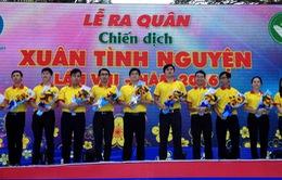 """TP.HCM: Hơn 31.000 sinh viên tham gia chiến dịch """"Xuân tình nguyện"""""""