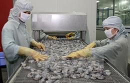 Nhật Bản cảnh báo chất lượng thủy sản Việt Nam