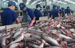 Xuất khẩu cá tra sang Trung Quốc tăng 90%