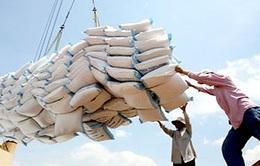 Khó khăn trong việc xây dựng thương hiệu gạo Việt