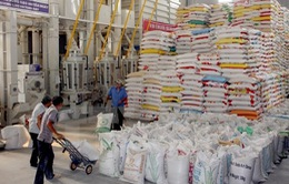 Trung Quốc kiểm tra 31 doanh nghiệp xuất khẩu gạo Việt Nam