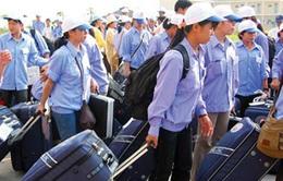 Hơn 33.600 lao động đi làm việc ở nước ngoài trong 4 tháng