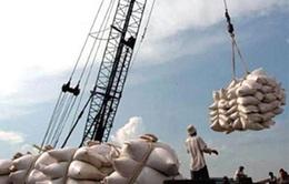 Xuất khẩu gạo của Việt Nam ở mức thấp nhất trong vòng 8 năm