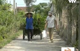 Gia đình ngư dân nghèo yên tâm tăng gia sản xuất nhờ Quỹ Tấm Lòng Việt