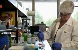 Thụy Sĩ phát hiện 2 trường hợp nhiễm virus Zika