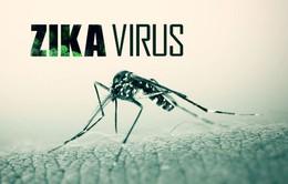 Mỹ tuyên bố tình trạng khẩn cấp ở Puerto Rico vì Zika