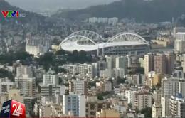 Kiến nghị hoãn hoặc chuyển địa điểm tổ chức Olympics Rio 2016 vì dịch Zika
