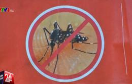 Singapore xem xét lại quy định cách ly bệnh nhân nghi nhiễm Zika